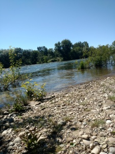 Boise greenway river
