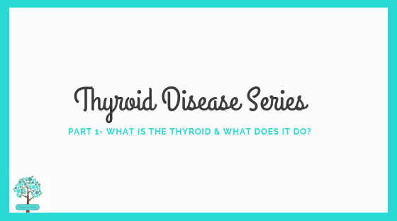 Thyroid Disease Series Part 1- What is the thyroid and what does it do?